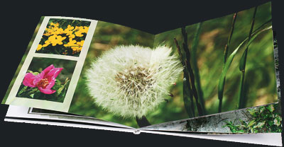 livre photo carre avec papier photo