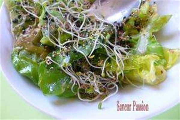 Salade verte aux graines variées &url=http://saveurpassion.over-blog.com/article-19683151.html Photo: Saveur passion