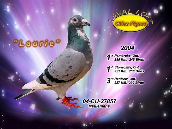 Photo: Gilles Pigeon, Laval Loft