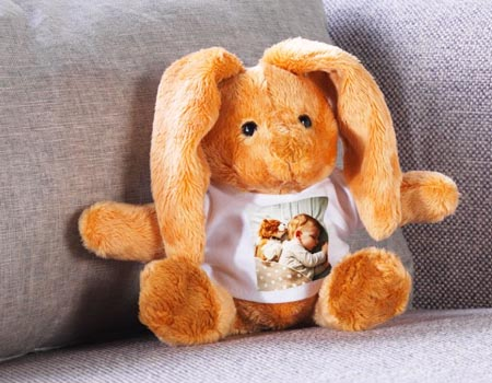 peluche lapin avec photo